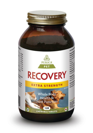 Picture of RECOVERY SA EXTRA STRENGTH CHEWABLE TABLETS 120S