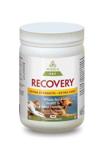 Picture of RECOVERY SA EXTRA STRENGTH CHEWABLE TABLETS 360S