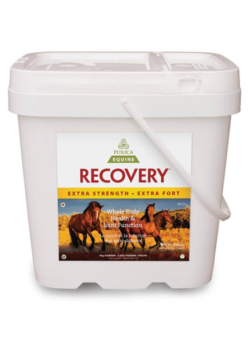 Picture of PURICA EQUINE RECOVERY - EXTRA STRENGTH 5KG