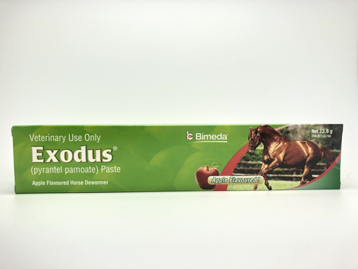 Picture of EXODUS DEWORMER FOR HORSES - SYRINGE - APPLE FLAVOUR 23.6GR