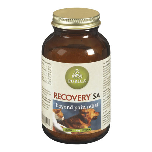 Picture of RECOVERY SA POWDER 150GR