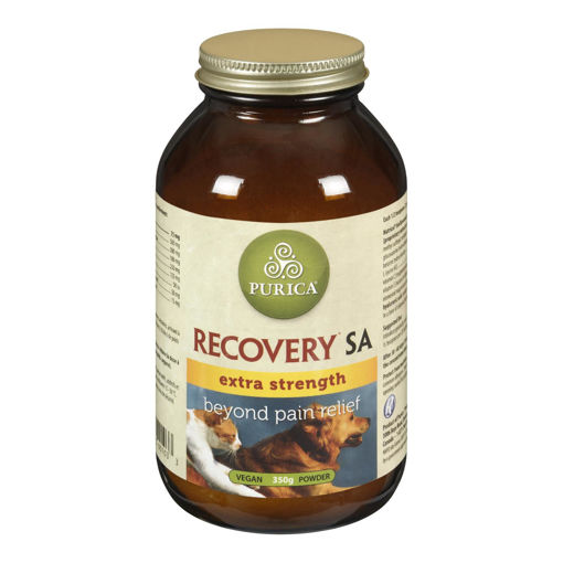 Picture of RECOVERY SA EXTRA STRENGTH - HA 350GR