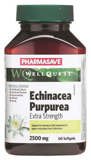 Picture of PHARMASAVE WELLQUEST ECHINACEA PURPUREA X-STRENGTH CAPSULE 2500MG 60S