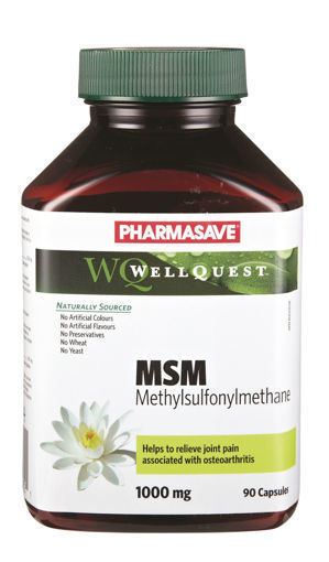 Picture of PHARMASAVE WELLQUEST MSM CAPSULE 1000MG 90S
